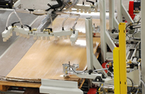 Vacuum Sheet Feeder by Creative Automation